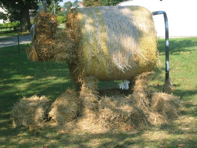 Stroh - Kuh