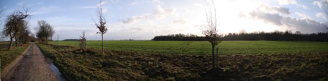 Vellahner Weg - Ein Rundblick übers Feld